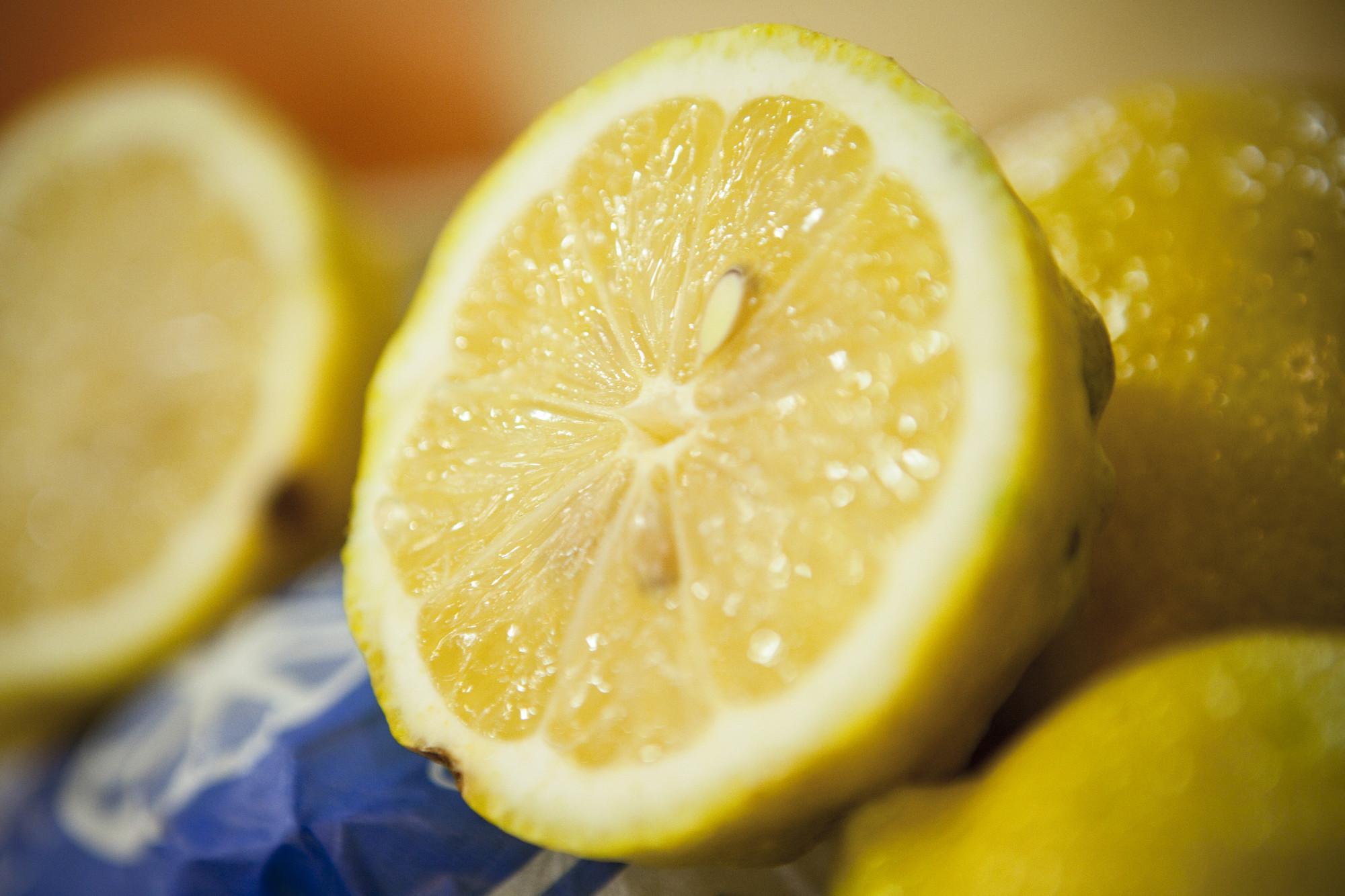Citrus limon | Sistema Nacional Argentino de Vigilancia y ...